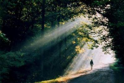 """Résultat de recherche d'images pour """"marcher vers la lumière"""""""